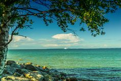 Tree and sea views Royalty Free Stock Images