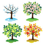 Tree-season Stock Images