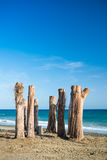 Tree Sentinels on a beach in Marbella, Spain Stock Photos
