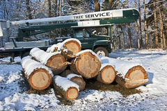 Tree service. A tree service cherry picker truck with a stack of freshly cut timber and logs Stock Images
