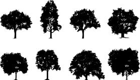 Tree Set Royalty Free Stock Photo