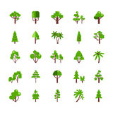 Tree Set Collection. Flat icons deciduous pine oak spruce fir   vector illustration Royalty Free Stock Photos