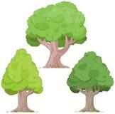 Tree Set Stock Photo