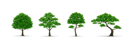 Tree set realistic vector illustration Royalty Free Stock Photography