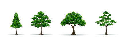 Tree set realistic vector illustration. Trees and leaf set realistic style vector illustration Royalty Free Stock Photography