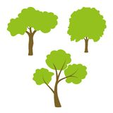 Tree set. Three different green tree set on white background Stock Photo
