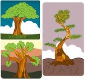 Tree set Stock Photography