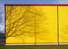 Yellow metal  building wall. Tree shades on yellow metal  building wall Royalty Free Stock Photo