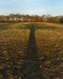 Tree shadow in countryside. Long shadow of tree in countryside with forest in background stock photography