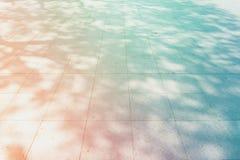 Tree shadow on the white concrete background Royalty Free Stock Photo