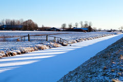 Tree shadows on fields in winter Royalty Free Stock Image