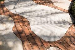 Tree shadows on mable floor. Stock Image