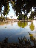 Tree shadows on river. Bridge banyan Stock Photography