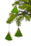 Tree shape cookies at Christmas tree Royalty Free Stock Photo