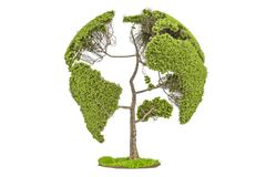 Tree in the shape of Earth Globe, environment concept. 3D render. Ing isolated on white background Royalty Free Stock Image