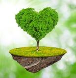 Tree in the shape heart Stock Photo