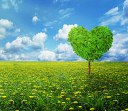 Tree in the shape of heart, valentines day background Royalty Free Stock Image