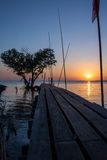 Tree in the shape of heart with wood bridge on the sea at twilight in Bangpu , in Thailand Stock Images