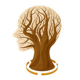 Tree head Royalty Free Stock Images
