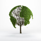 Tree shaped like the world map Royalty Free Stock Images