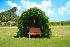 Tree shelter Stock Photography