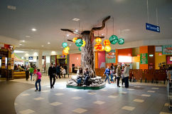 Tree in a shopping centre in Lvov Royalty Free Stock Photography