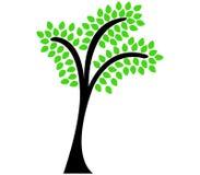 Tree shown Stock Photos