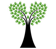 Tree shown Royalty Free Stock Images