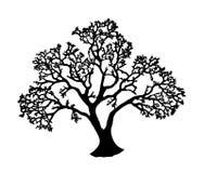 Free Tree Silhouette Royalty Free Stock Photos - 14145098