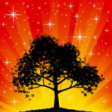 Tree Silhouette stock illustration