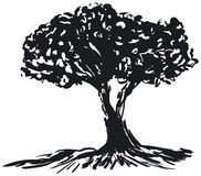 Tree silhouette. Silhouette of a bare tree - additional ai and eps format available on request Royalty Free Stock Images