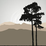 Tree silhouette on an abstract background Royalty Free Stock Photo