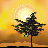 Tree silhouette on an abstract background. 2d vector Stock Photos