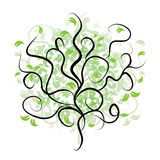 Tree silhouette, branch green Royalty Free Stock Image