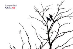 Tree silhouette with a crow. On a white background Royalty Free Stock Photos
