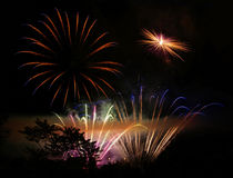 Tree silhouette and fireworks Royalty Free Stock Photos
