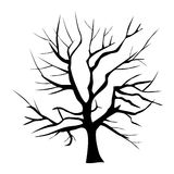 Tree silhouette isolated Royalty Free Stock Photo