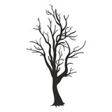 Tree silhouette isolated on white background Royalty Free Stock Image