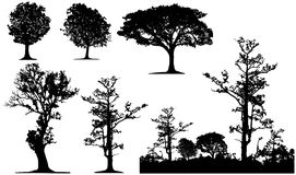 Tree silhouette. A set of forest and tree silhouette Royalty Free Stock Image