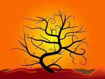 Tree silhouette at sunset Royalty Free Stock Image