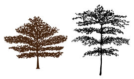 Tree silhouette. Two beautiful tree silhouette.vector illustration royalty free illustration