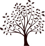 Tree. Silhouette, Vector Illustration. Black Stock Image