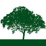 tree silhouette vector Stock Photo