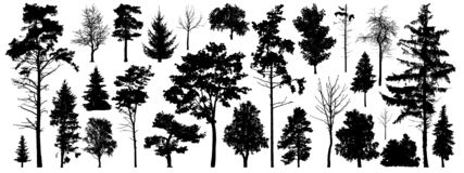 Free Tree Silhouette Vector. Isolated Forest Trees On White Background Royalty Free Stock Photo - 142182175