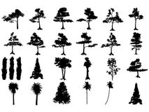 Tree silhouettes. Group of highly detailed Tree silhouettes Royalty Free Stock Image