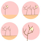Tree silhouettes in morning set Royalty Free Stock Image