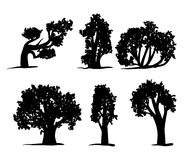 Tree silhouettes set Stock Photo