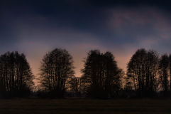 Tree silhouettes at sunset Stock Photography