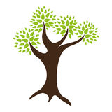 Tree. A simple tree illustration with green leaves Royalty Free Stock Image