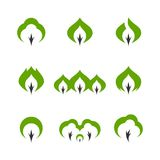 Tree simple vector icon set Royalty Free Stock Images